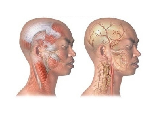 頭痛痛很大?改善偏頭痛有有效妙招!常頭痛者不看真的超可惜!(...