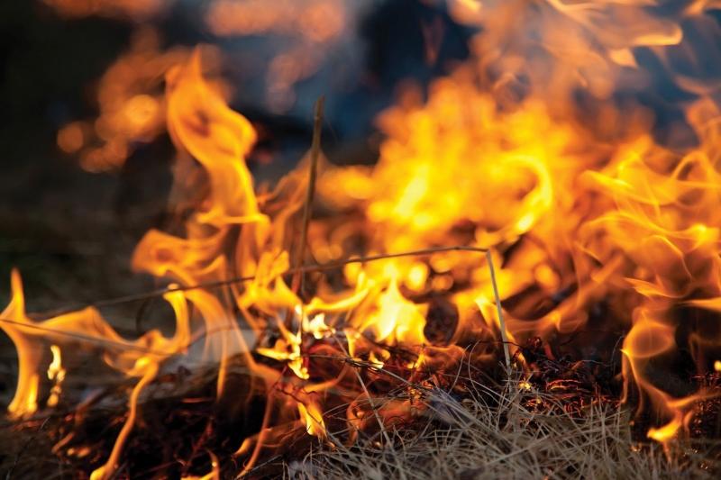 身邊哪些不能隨意燒掉?99%的人不知道的秘密...