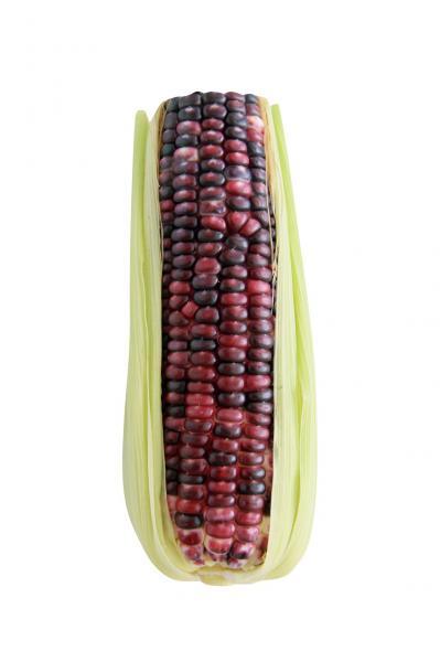 玉米可保護眼睛、延緩老化|台灣好食材...