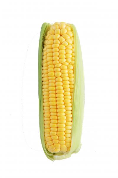 簡單烤~奶油玉米|台灣好食材...