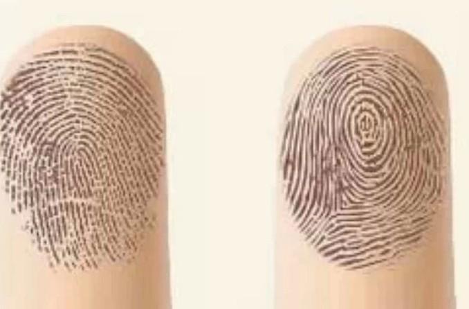 你的手指有多少螺紋呢?從「斗」和「簸箕」決定你的性格,這麼棒...
