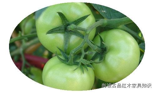 史上最毒的13種蔬菜,真不是危言聳聽!...