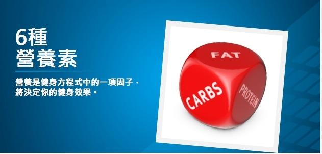 健身基本知識:6種營養素...