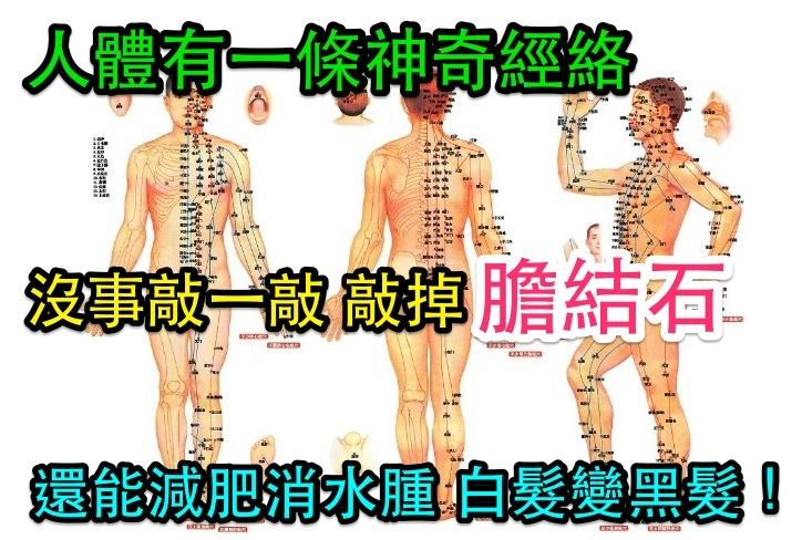 人體有一條神奇經絡,沒事敲一敲敲掉膽結石!還能減肥消水腫白髮...