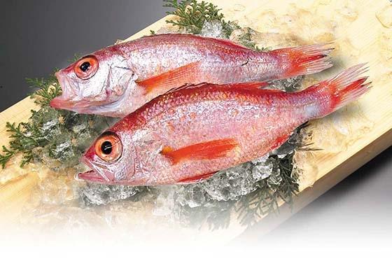 魚身上兩部位千萬別吃!破壞腦內神經系統、影響腦部發育!...