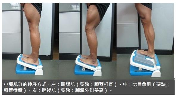 為什麼小腿會越跑越痛?◎凃俐雯醫師...