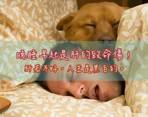 晚睡早起是肝的最大致命傷!請小心肝!...