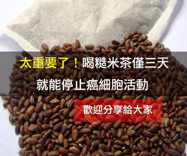 太重要了!喝糙米茶僅三天就能停止癌細胞活動~(快轉分享)...
