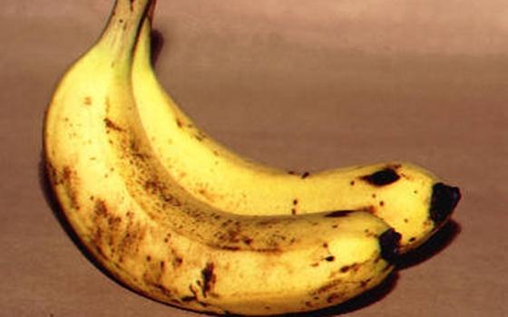 吃飯前為什麼要先吃一根香蕉?不看你根本不知道有多厲害!!...