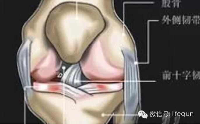 膝蓋痛真的有救了!這個方法學起來你就不會再痛了!...