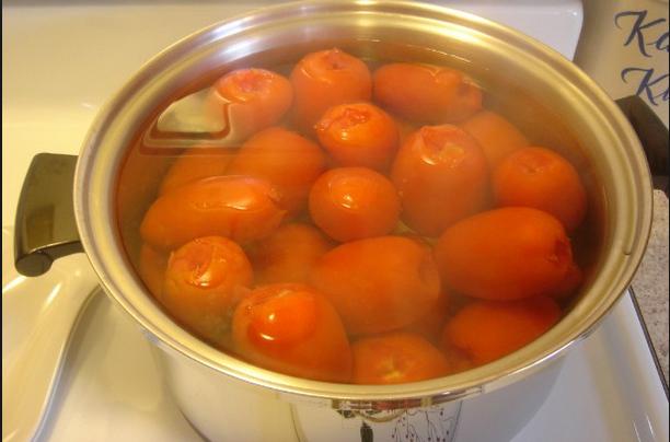 美國人聰明地太可惡!幾乎每個家庭都種蕃茄的原因...我現在終...