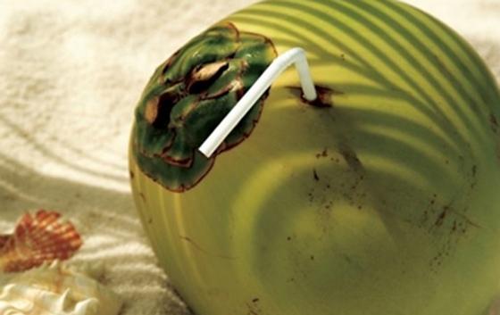 妳一定不知道原來椰子有這麼驚人的功效,醫生絕對不會告訴你能治...