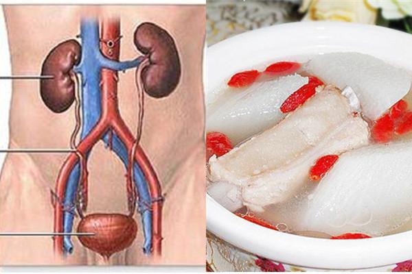 人容易疲倦,竟是腎臟出問題!!用這兩種常見食物食療,就能改善...