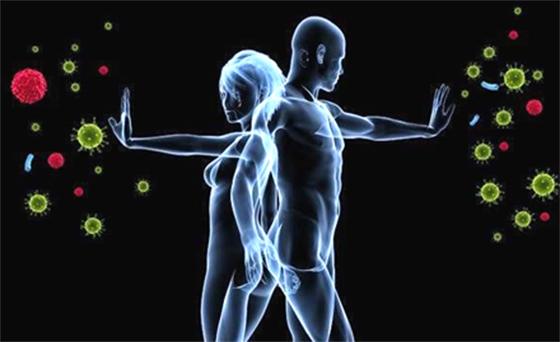 『免疫系統』的驚人真相,寫得太好了,一定要了解阿!!!...