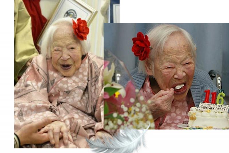震驚世界!日本117歲人瑞的長壽秘密,竟然是…太令人意外了!...
