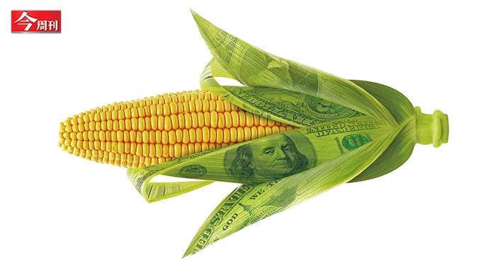 基改食物比美牛的問題更嚴重!...