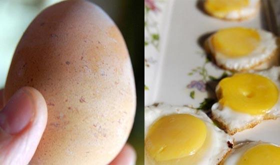 真是高招阿!!南韓神廚教你如何用一個雞蛋做出7個煎蛋...一...
