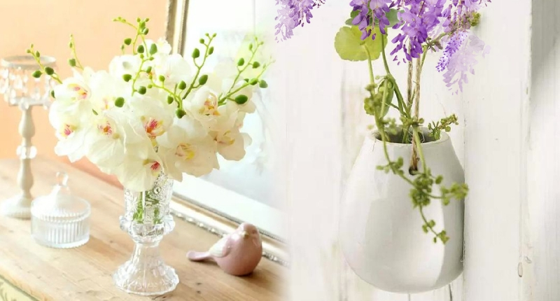 太棒!這幾種植物比「空氣清新機」還強!!擺在家,又美又清爽你...