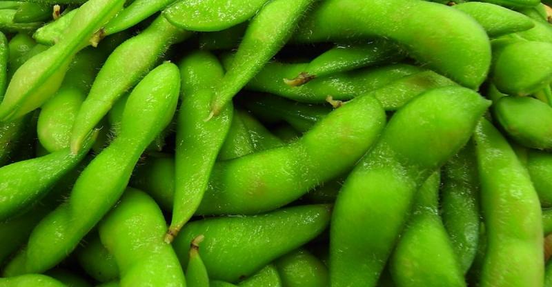 被稱為『綠金』果然名不虛傳!!消脂、促進膽固醇代謝、改善更年...