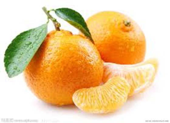 橘子跟著這些東西一起吃,簡直在拿命開玩笑!!怎麼現在才知道阿...