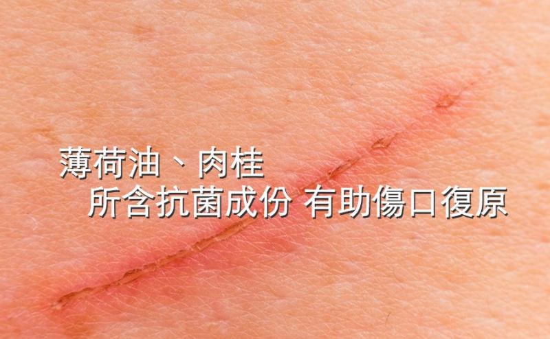薄荷油、肉桂所含抗菌成份有助傷口復原...