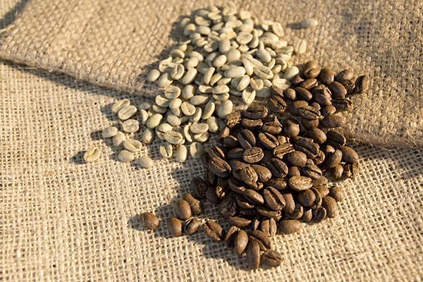 當心過期咖啡豆滋生毒素傷肝...
