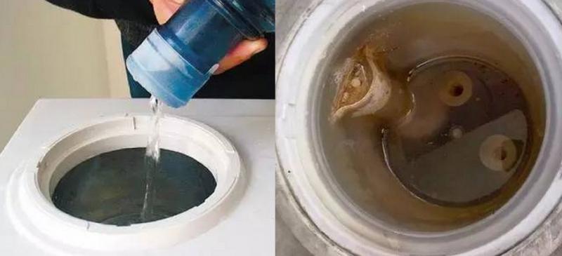 90%的人都不知道1年沒洗的飲水機含菌量會這麼驚人!長期未清...