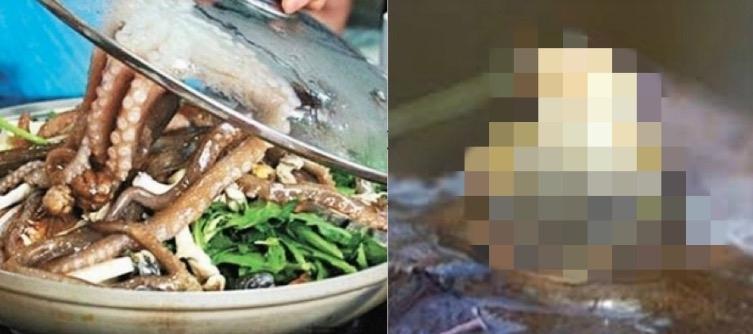 千萬要小心吃魷魚刺身!一名63歲南韓女子竟然被魷魚『口爆』醫...