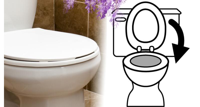 超驚悚!上完廁所一定要把馬桶蓋放下!太可怕了…...