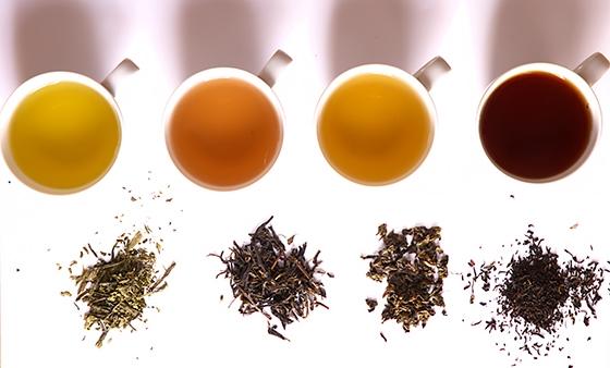 所有茶葉的功效都都集齊全了,照著喝就不會錯了!!!...