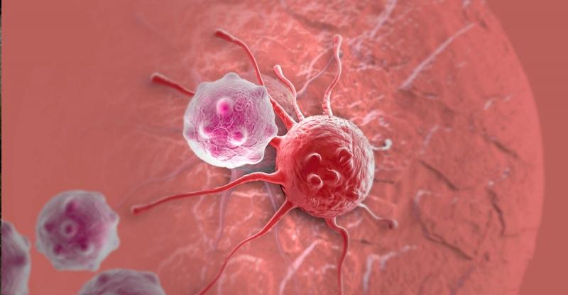 原來癌細胞是靠「它」才能生存,癌末者只要不吃「它」癌細胞就死...