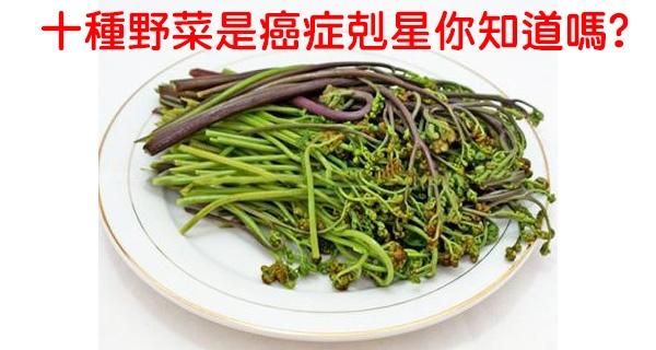 最經濟實惠的天然藥材,這十種野菜是癌症剋星,你知道嗎?...