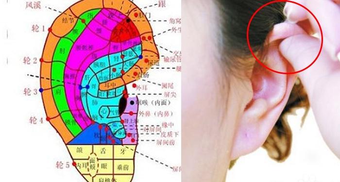 一天10分鐘,耳朵的穴道按摩讓你氣色好、肩膀不酸了、失眠也治...