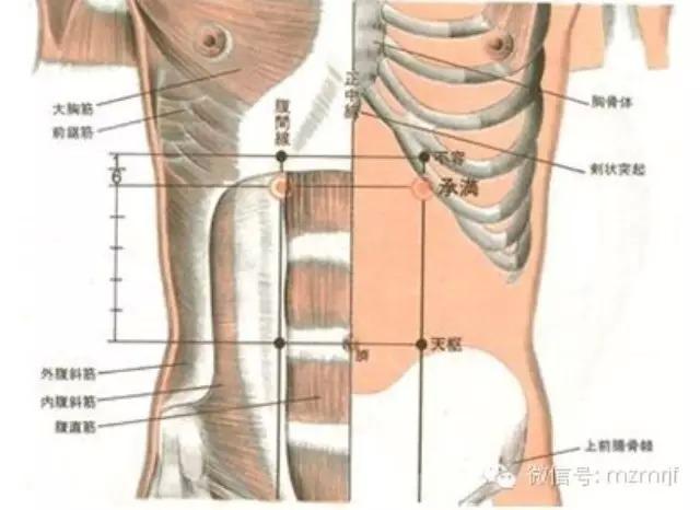 原來中醫都是這樣幫你排毒的!身體各個部位的經絡功能一次列出來...