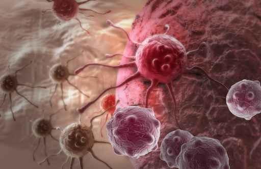 醫生都說了,吃這三大類食物!癌細胞會在身體內快速滋長!還不趕...