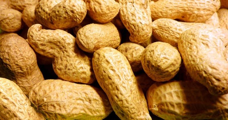 綠豆、花生都有助於「養肝血、疏肝氣」!居家養肝的保健方法,你...