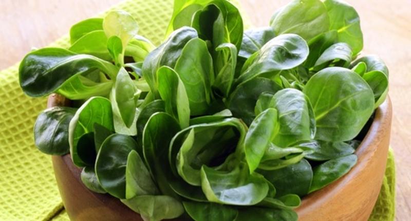 「綠色蔬菜」超棒!!有五大健康功效!心臟不好、患有糖尿病、想...