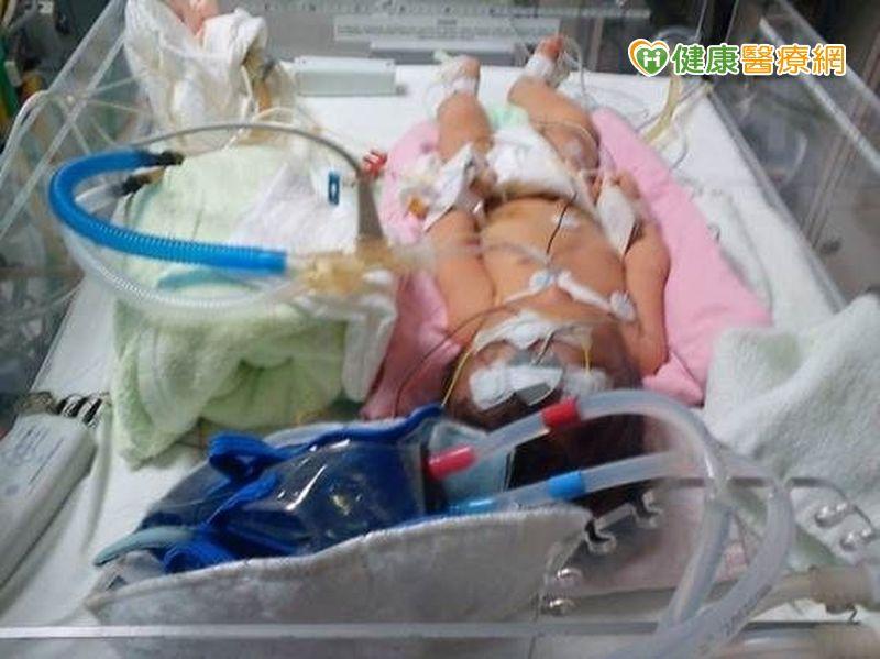 新生兒周產期窒息把握黃金6小時低溫療法...
