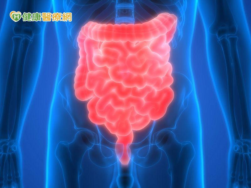 腸道壞菌影響健康和葷食大有關係...