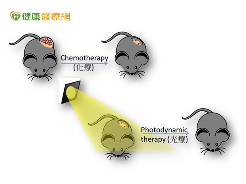 抗癌新療法興大提出化療與光療雙效劑型...