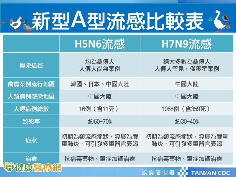 H5N6禽流感是什麼?這些症狀要就醫...