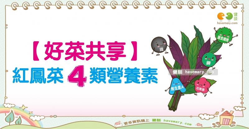 紅鳳菜的營養價值|營養教室蔬食篇12...