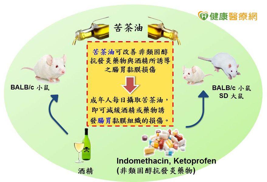 研究證實:苦茶油可緩解急性胃黏膜損傷...