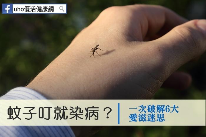 蚊子叮就染病?一次破解6大愛滋迷思...