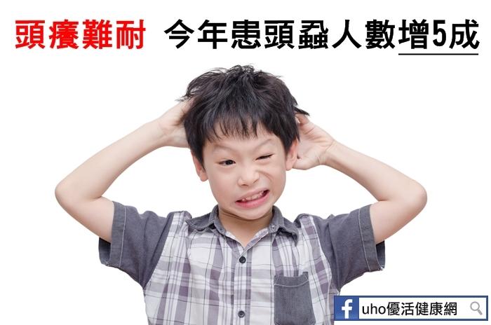 今年患頭蝨人數增5成!國小階段孩童最容易被感染!這些都是最常...