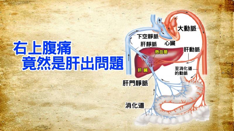 肝功能正常竟罹癌?!出現這6大徵兆,你的肝正在衰敗中...如...
