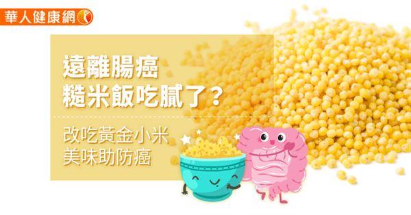 遠離腸癌,糙米飯吃膩了?改吃黃金小米,美味助防癌LIFE生...